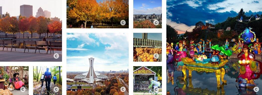 《蒙特利尔最佳旅游季节》