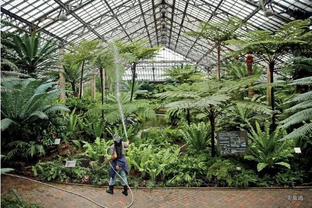 《芝加哥植物园攻略美国旅游攻略组成员 美国旅游攻略》
