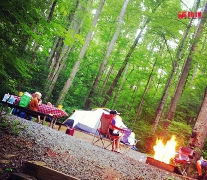 《大雾山公园的营地》