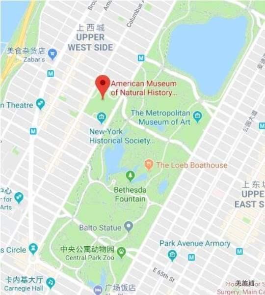 《如何去纽约自然历史博物馆》