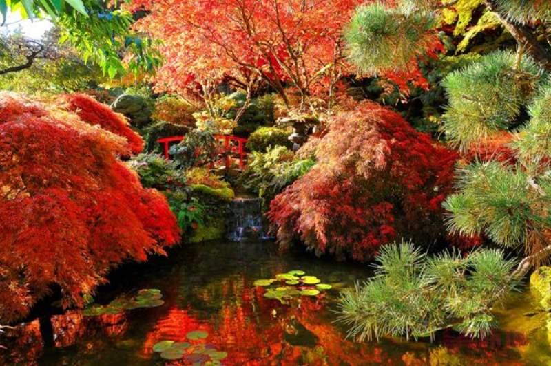 《布查特花园游览景点》