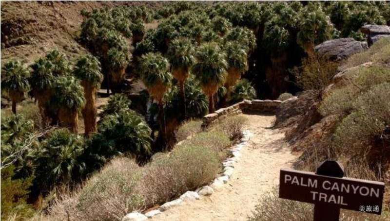 《棕榈泉市区景点》