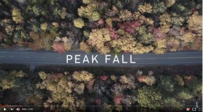 《阿卡迪亚国家公园的视频》