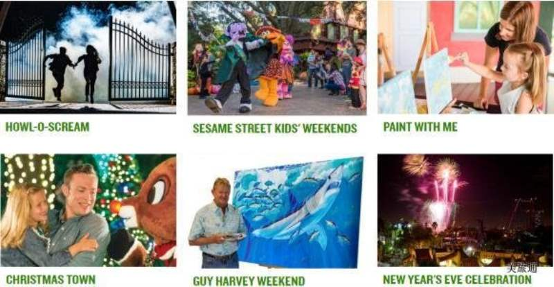 《Busch Gardens的表演》