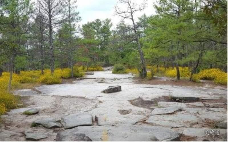 《石山州立公园的登山与徒步》