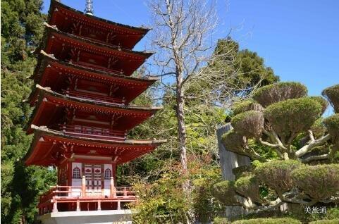 《旧金山日本茶园简介美国旅游攻略组成员 美国旅游攻略》