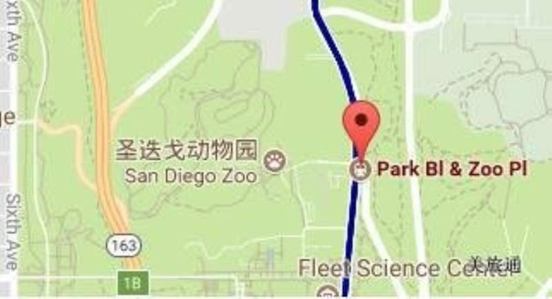 《如何去圣迭戈动物园》
