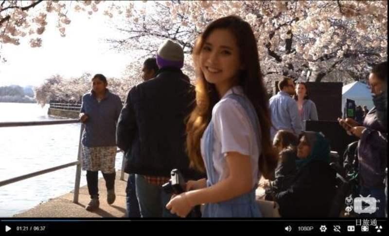 《Q. 华盛顿的樱花在哪里看?》