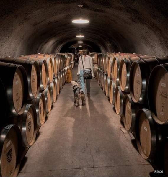 《纳帕谷酒庄排名》