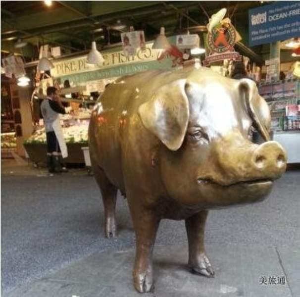 《金猪 Rachel the Piggy Bank》