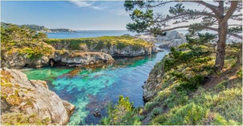 《Point Lobos State Reserve》