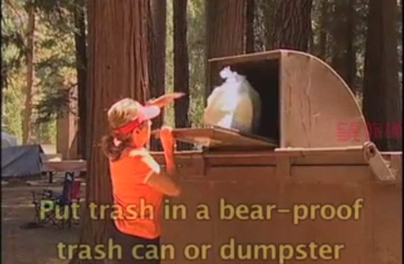 《关于优胜美地的黑熊》