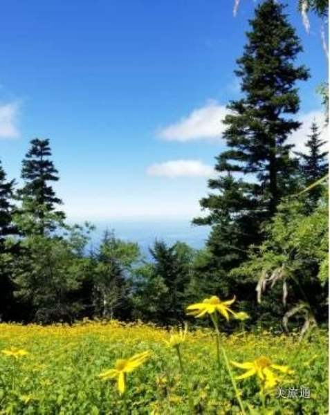《大雾山公园里的主要景点》