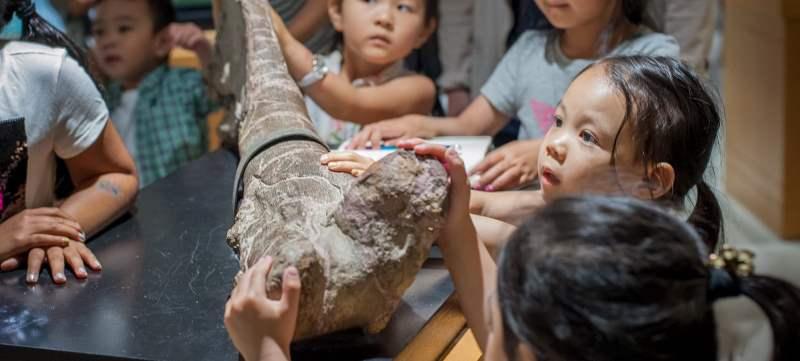 《太平洋地球博物馆基本信息》