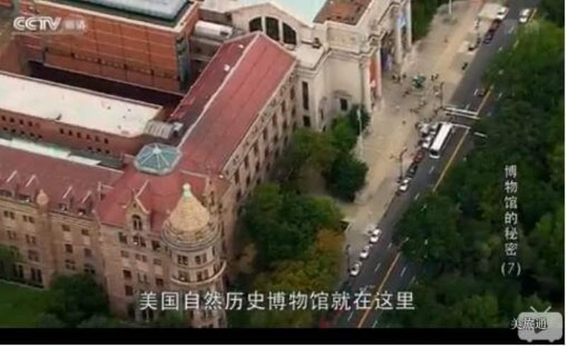 《纽约自然历史博物馆的视频》