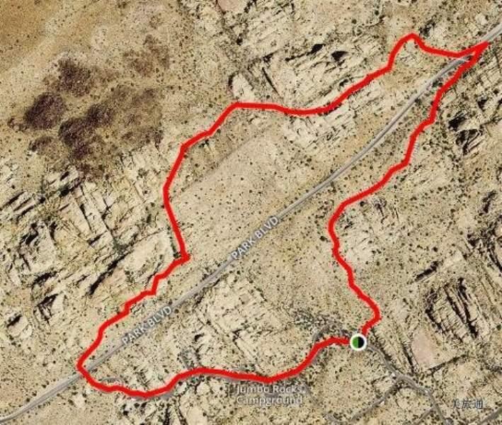 《约书亚树国家公园的主要景点》