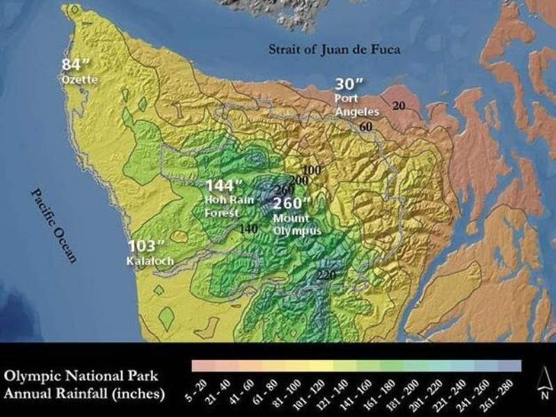 《奥林匹克国家公园的天气》