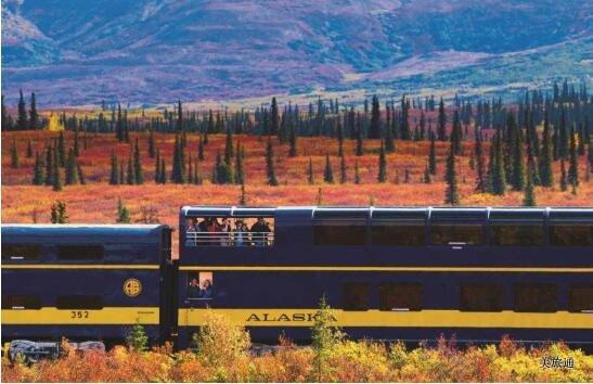 《阿拉斯加火车旅行常见问题(含极光列车)美国旅游攻略组成员 美国旅游攻略》
