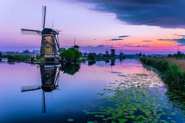 荷兰技术移民