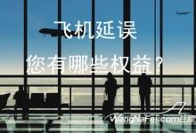 飞机延误,您有哪些权益?