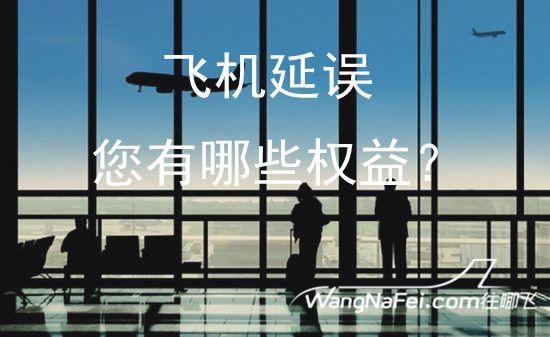 《飞机延误,您有哪些权益?》